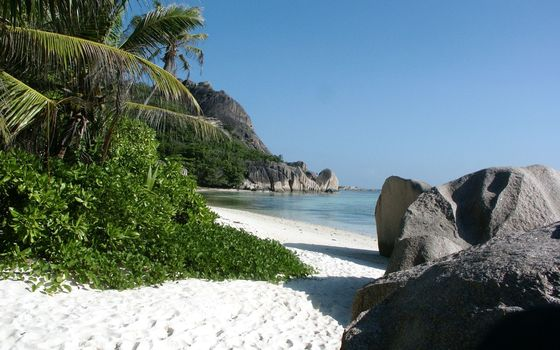 tropical beach, sand, Sea, stones, reed
