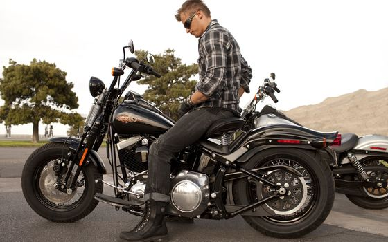 Harley-Davidson, Softail, FLSTSB Cross Bones, FLSTSB Cross Bones 2011, мото, мотоциклы, moto, motorcycle, motorbike