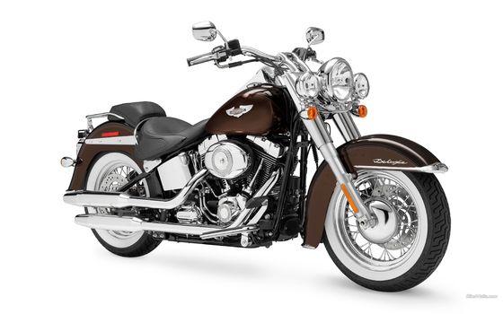 Harley-Davidson, Softail, FLSTN Softail Deluxe, FLSTN Softail Deluxe 2011, Moto, Motorcycles, moto, motorcycle, motorbike