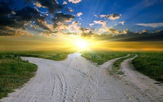 road, fork, light