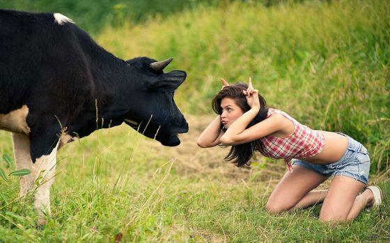 cow, girl, meadow, tomfoolery