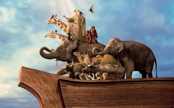 Evan Almighty, ark, man, animals, Elephants, Giraffes, Camels, Birds, Monkey, ship, sky