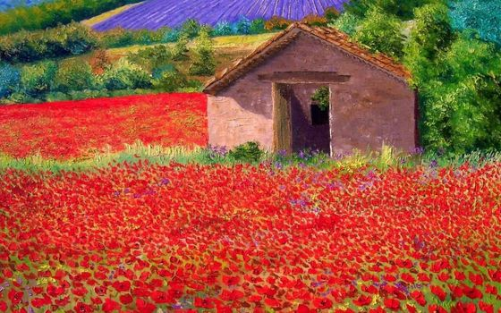 picture, oil, field, Poppies, lodge, summer