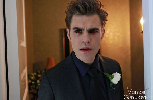 Paul Wesley, Stephen, The Vampire Diaries