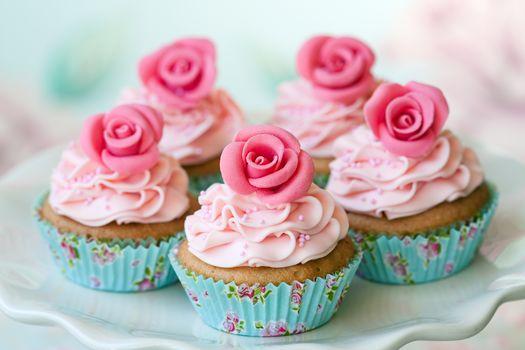 dish, Cupcakes, cream, rosettes, dessert