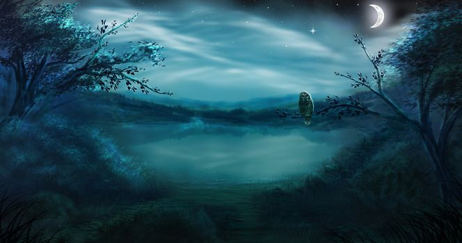ночь, лес, озеро, луна, сова, птица, месяц, звезды, туман
