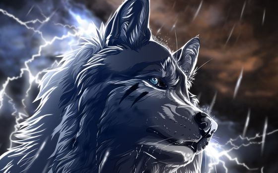 wolf, rain, Lightning, night