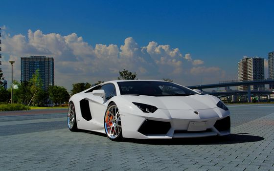 Lamborghini, Aventador, LP700-4, white, sky, clouds, Lamborghini, aventador, white, front view, sky, clouds, cars, machinery, Car
