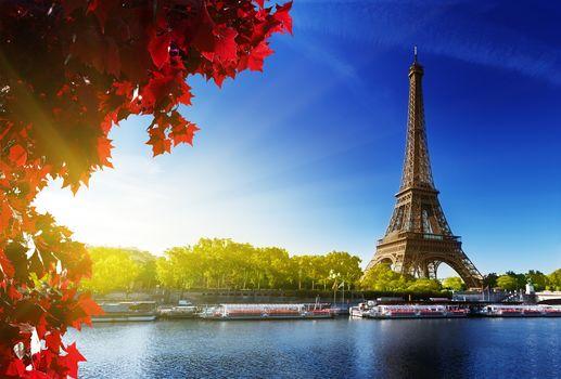 Эйфелева башня, Париж, Франция, деревья, река, Сена, небо, солнце, листья, красные, осень