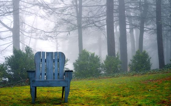nature, chair, background