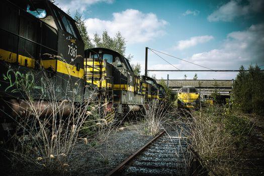 train, Rails, railroad, cars, grass, dry