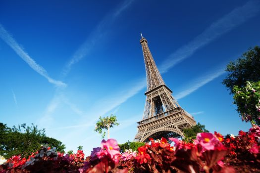 Paris, France, Eiffel Tower, Flowers, Trees, sky