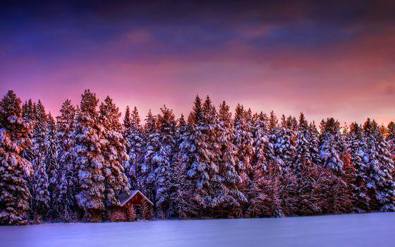 Winter, sunset, forest, snow, lodge, landscape