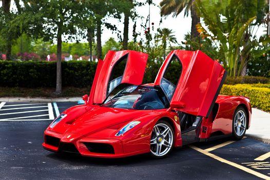 феррари, энцо, красный, вид спереди, парковка, деревья, кустарник, Ferrari