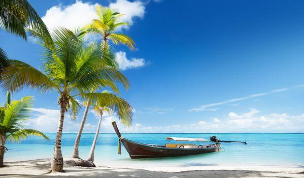 tropical, sea, boat, palms, beach, Тропический, море, лодки, пальмы, пляж