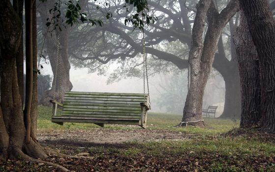 park, swing, nature