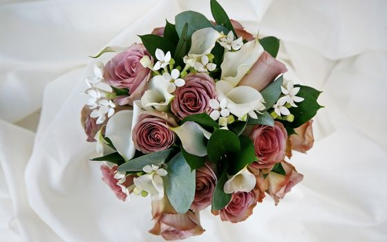bouquet, composition, Rose, Callas