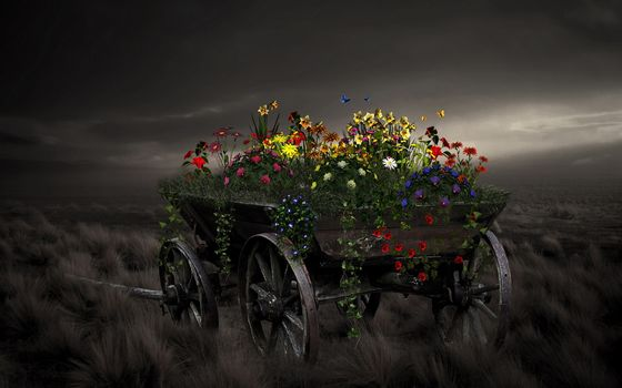 Flowers, cart, style, background