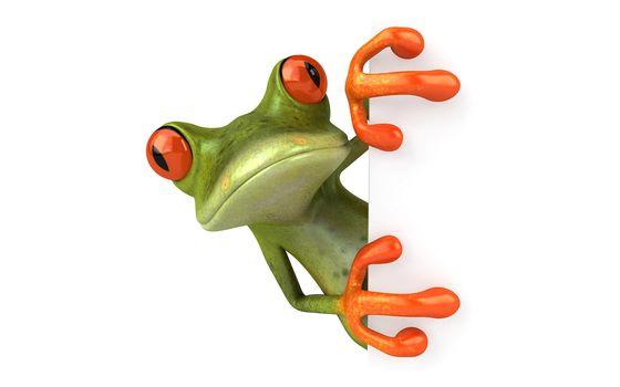 Frog, lie down,