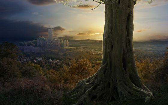 castle, suburb, tree, nature, collage