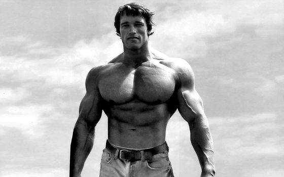Arnold Schwarzenegger, Arnie, muscles, bodybuilder, actor, sky, clouds