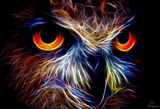 owl, 3d, art