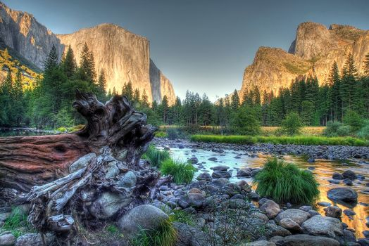 mountains, river, rocks, dead tree, Branches, nature, green, grass, trees, water