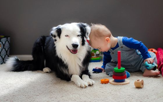 Animals, animal, dog, baby, KIDS, KID, child, childhood