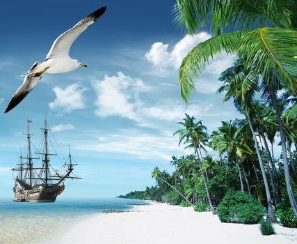 tropical, Paradise, beach, palms, sea, ocean, summer, Vacation, beach, sea, Palms, tropics, sand, shore, ship, island