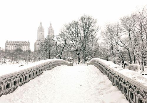Нью-Йорк, снег, Центральный парк, Манхэттен, зима, США, деревья, дома, парк, город, здания