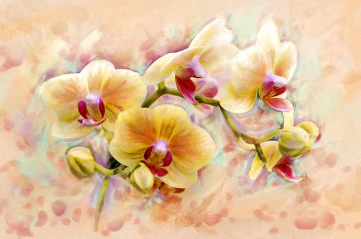 fabulous, flower, floret, ORCHIDS, so, beauty., shine, originality, form, Art