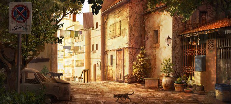 plants, machine, cat, Art, home, street, pots, skeleton, linen, city