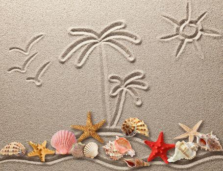 ракушки, песок, рисунок