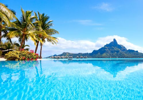 beach, Palms, sea, tropics