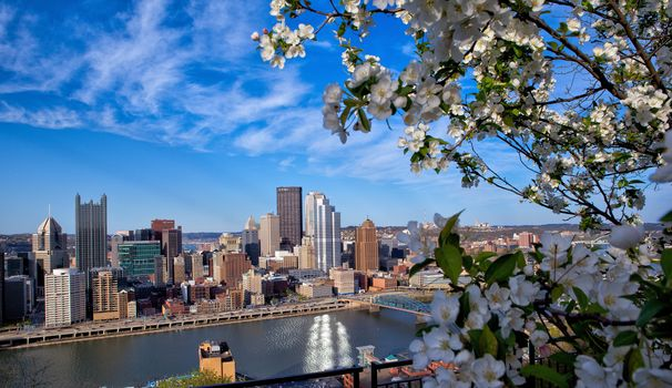 Washington, Pittsburgh, USA
