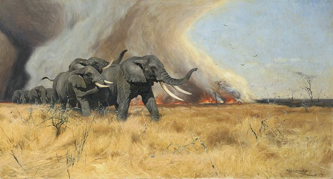 Art, picture, painting, Friedrich Wilhelm Kuhnert, Escaping from fire, elephants.