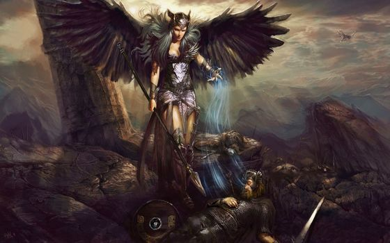 pablo fernandez, valkyrie, death, battle, soul, art