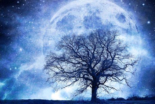 tree, planet, 3d