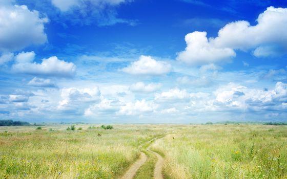 дорога, небо, поле, облока