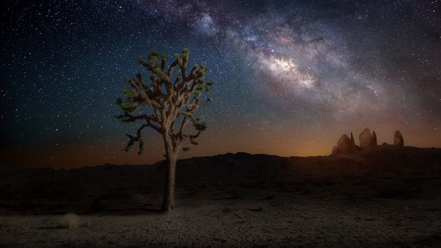 небо, природа, звезды, млечный путь, ночь, дерево, камни, Калифорния