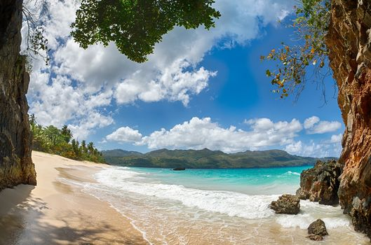 beach, sand, coast, landscape, Palms