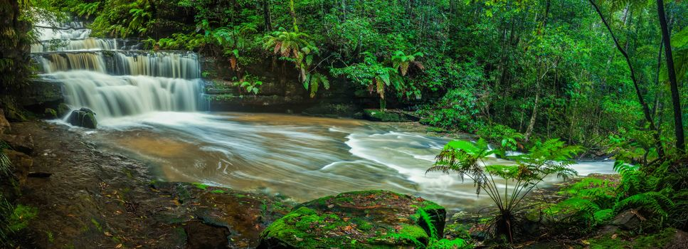 waterfall, forest, trees, nature, panorama