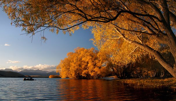 river, autumn, trees, landscape
