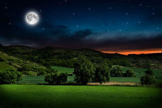 moon, sky, night, trees