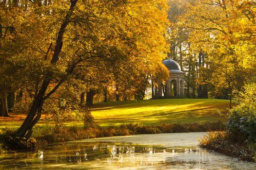 пруд, парк, осень, деревья, пейзаж