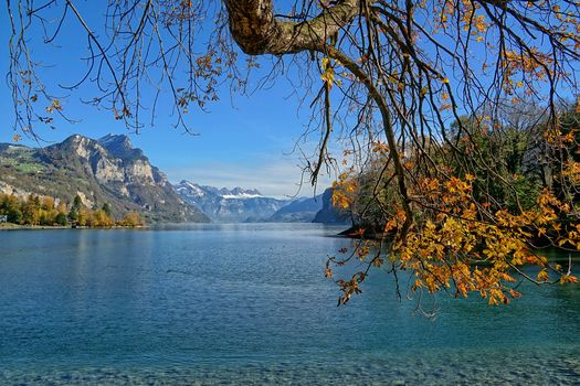 lake, autumn, trees, landscape