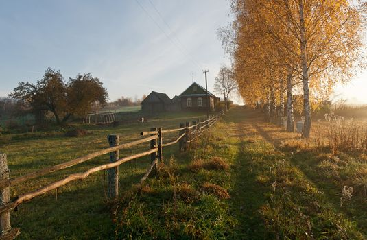 village, home, road, autumn, trees, Birch, landscape