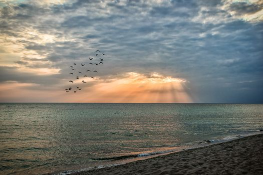 beach, sea, sand, evening, sunset, sky, clouds, birds, Yevpatoriya, Crimea, Russia, nature, landscape