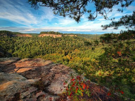Red River Gorge, Chimney Top Rock, Daniel Boone National Forest, Slade, Kentucky, Red River Gorge, Daniel Boone National Forest, Slade, Kentucky, Mountains, canyon, forest, BRANCH, panorama