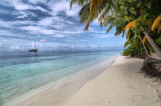 море, берег, пальмы, корабль, пейзаж